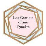Christèle Vayron-Laurent Les Carnets d'une Quadra