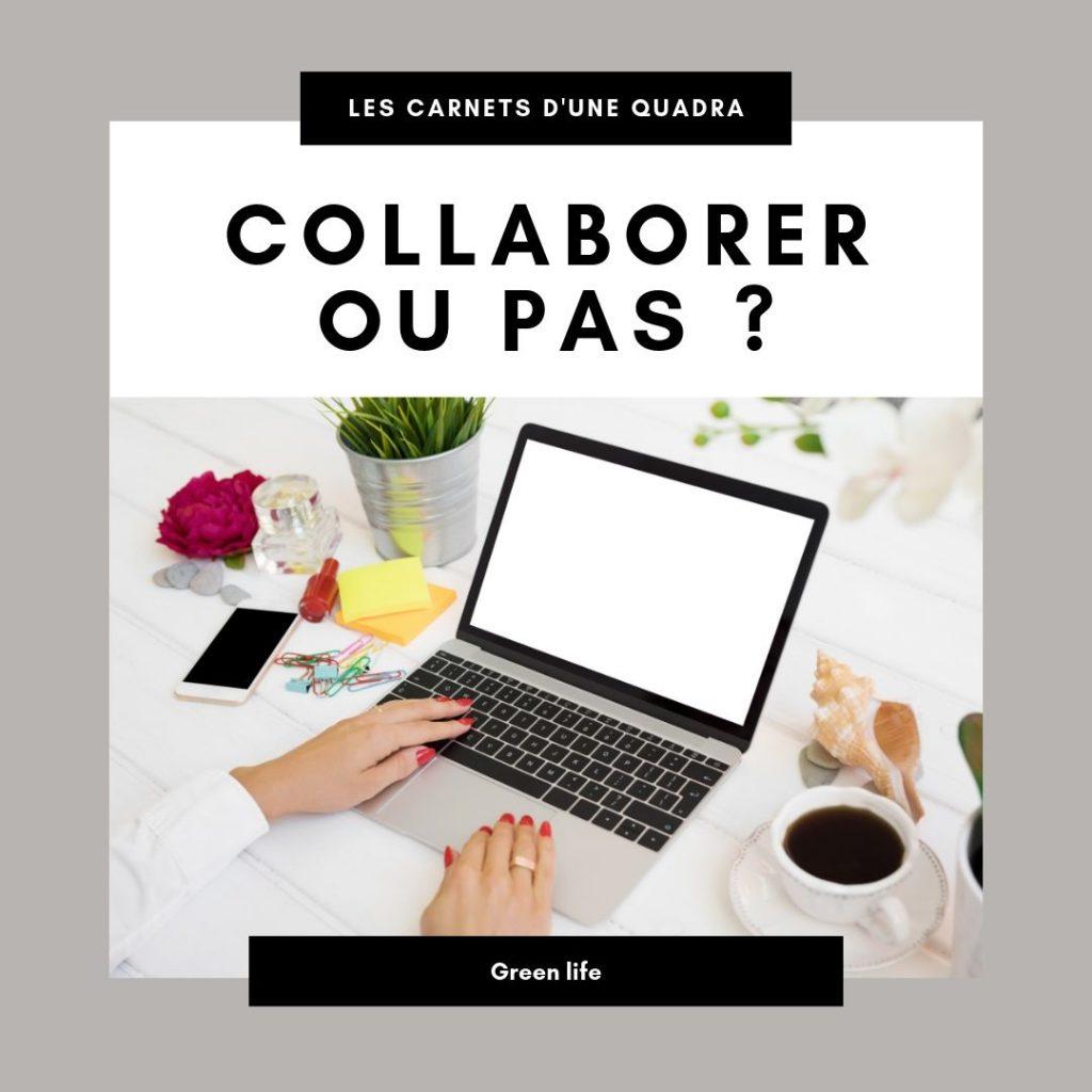 blogueuse influenceuse lyonnaise environnement Les Carnets d'une Quadra